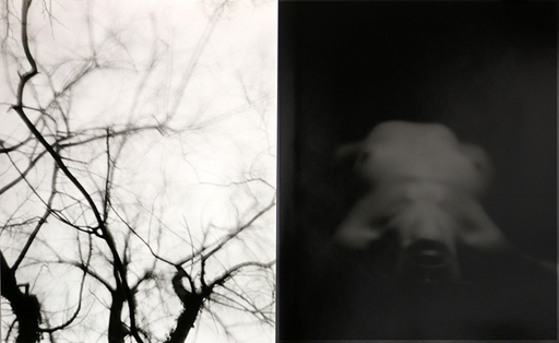 Edouard DE PAZZI - 照片 - Eros and Thanatos - Diptych 04