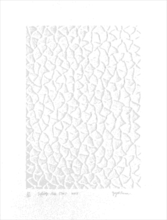 Yayoi KUSAMA - Grabado - Infinity Nets (TW)