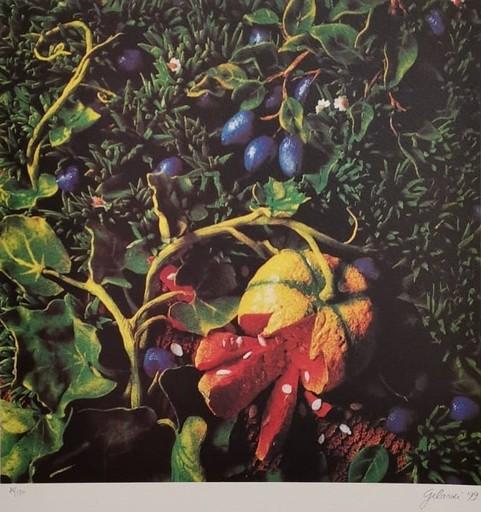 Piero GILARDI - Print-Multiple - untitled