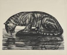 Paul JOUVE - Grabado - Tigre s'abreuvant