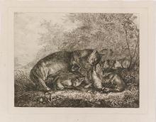 """Karl Wilhelm TORNAU - Pintura - """"Fox Family"""", Etching, early 19th Century"""