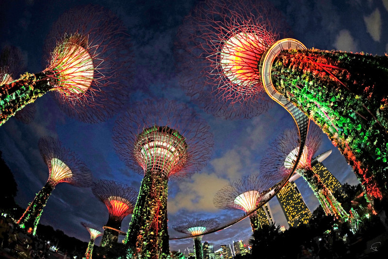"Bruno PAGET - Photo - Singapore ""Gardens by the Bay"" #2"