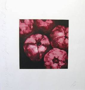 Donald SULTAN - Print-Multiple - Pomegranates