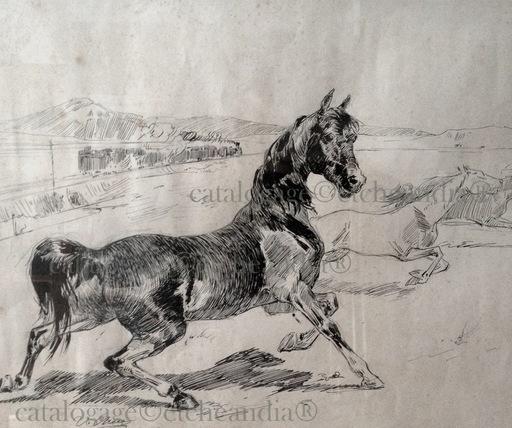 "Ulpiano CHECA Y SANZ - Dessin-Aquarelle - ""Cheval de fer"" Caballo - Horse"
