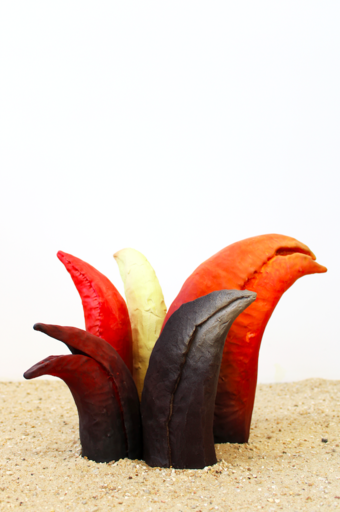 Madeleine CALAFELL - Céramique - « Bouquet de cinq becs »