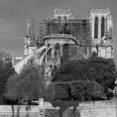 Clara CÉNA - Fotografia - Notre Dame de Paris estropiée