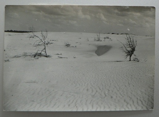 Raoul HAUSMANN - Photography - Jershöjt, Baltic Sea, 1931