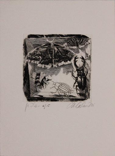 Mario CALANDRI - Print-Multiple - Senza titolo