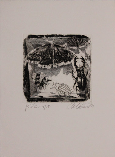 Mario CALANDRI - Grabado - Senza titolo