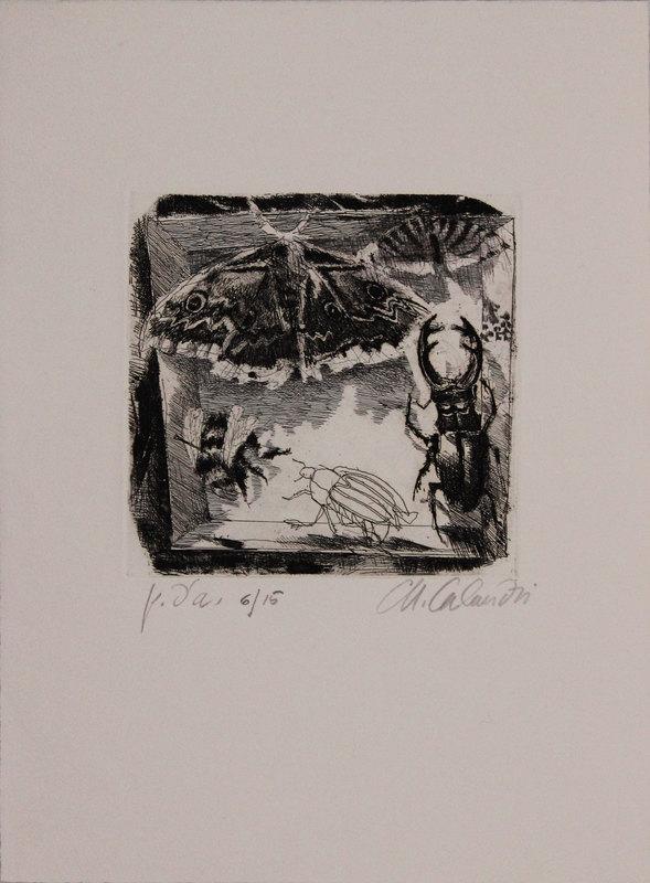Mario CALANDRI - Estampe-Multiple - Senza titolo