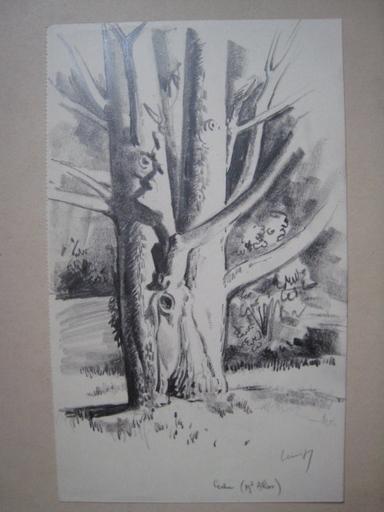 Paul LEMAGNY - Zeichnung Aquarell - LE CEDRE