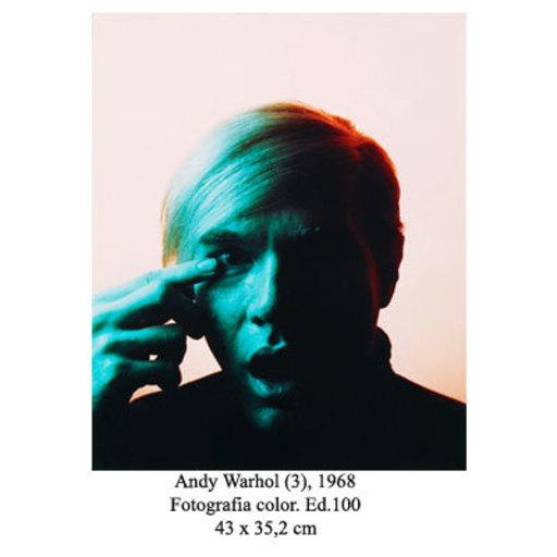 Philippe HALSMAN - Fotografia - Andy Warhol (3)
