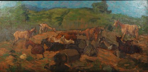 Giovanni MARCH - Pittura - Capre in monte