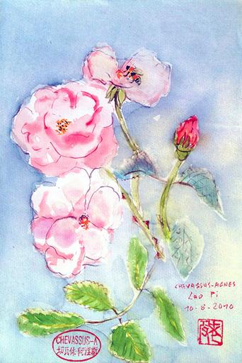 Jean-Pierre CHEVASSUS-AGNES - Dessin-Aquarelle - Roses aubépine de mon jardin et abeille butineuse