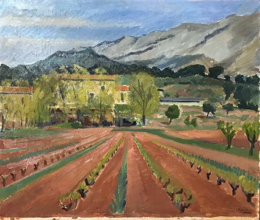 Julia MINGUILLON IGLESIAS - Pittura - PAISAJE CON VIÑEDOS
