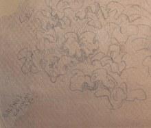 BALTHUS - Dessin-Aquarelle - « Eve au jardin d'Eden »