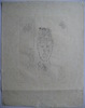 Hans BELLMER - Grabado - GRAVURE 1972 SIGNÉE AU CRAYON NUM/100 HANDSIGNED NUM ETCHING
