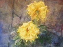 Pedro CANO - Painting - Rosas amarillas