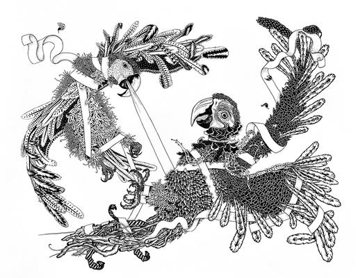 Claire FANJUL - Disegno Acquarello - Les perroquets