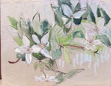 Gretchen WOHLWILL - Drawing-Watercolor - Blüten und Blätter