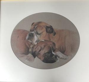 Galina PEROVA - Dessin-Aquarelle - Two resting dogs
