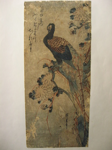 Ando HIROSHIGE, Chrysanthemum and Pheasant
