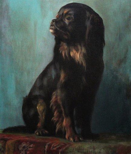 Alfred VON SCHRÖTTER - Pintura - Portrait of a pekingese dog Chien Pékignois