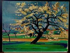 Jean MONTCHOUGNY - Peinture - Cerisier fleuri