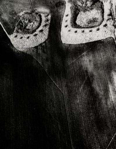 Mario GIACOMELLI - Photo - Presa di coscienza sulla natura