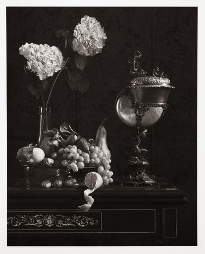 Gilles LORIN - Fotografia - Still Life with Nautilus, Study No. 1
