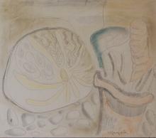 Herman KRUYDER - Dibujo Acuarela - Sea life