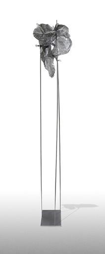 Artan SHALSI - Scultura Volume - P_L_AI_FE_18_279