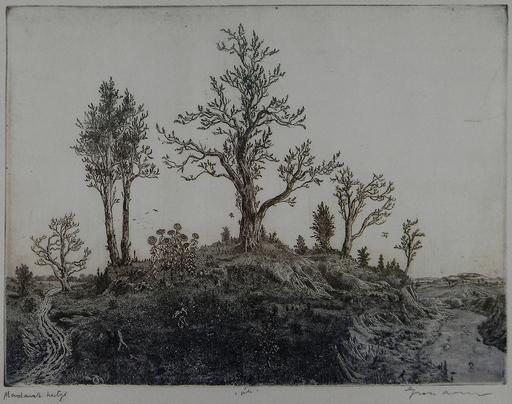 Arnold GROSS - Druckgrafik-Multiple - Garden of Birds