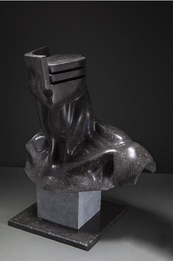 Daniele GUIDUGLI - Sculpture-Volume - COMPOSIZIONE