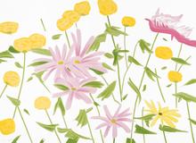 Alex KATZ - Print-Multiple - Spring Flowers