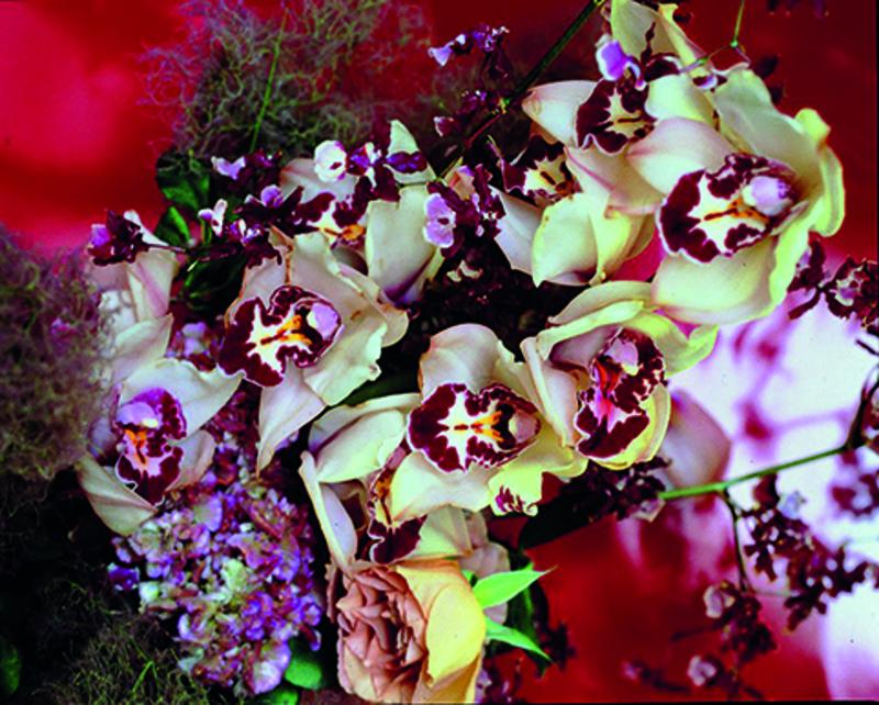 Nobuyoshi ARAKI - Photography - Flowers