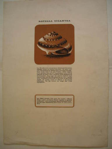 Mimmo ROTELLA - Print-Multiple - Shell Rotella Oils,1968.