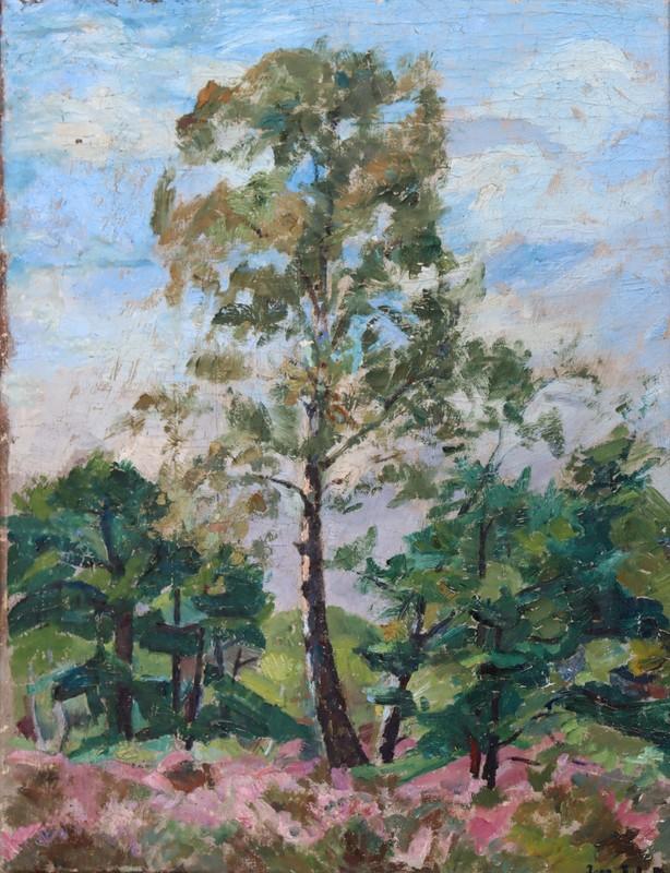 """Jean Jules DUFOUR - Pintura - """"PIN ET BRUYERES"""""""