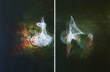 Pooya ARYANPOUR - Pittura - Floating Objects on the Garden No.3