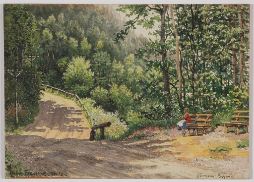 "Hermann SCHMID - Dessin-Aquarelle - ""On Forest Road"" by Hermann Schmid"