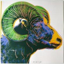 安迪·沃霍尔 - 版画 - Bighorn Ram