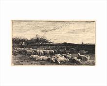 Charles François DAUBIGNY - Print-Multiple - Le Grand Parc à Moutons