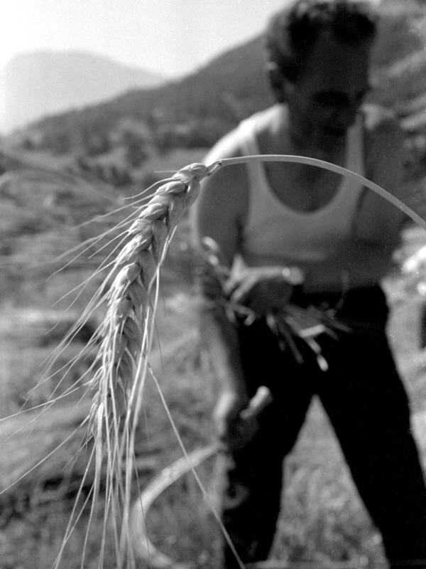 Giuseppe PERSIA - Photography