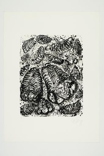 Tony CRAGG - Druckgrafik-Multiple - Trilobites