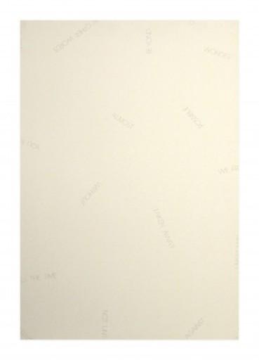Robert BARRY - Druckgrafik-Multiple - Réflexions