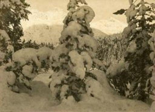 Albert STEINER - Fotografie - Winterabend bei St. Moritz