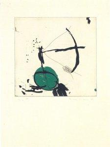 Joseph RIERA I ARAGO - Grabado - Avió petit roda verda