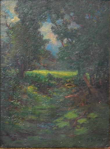 Petr Alexandrovich NILUS - Pittura - Landscape