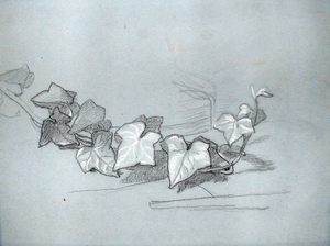 Thomas COUTURE - Dessin-Aquarelle - Study for Branch of Ivy (for Damocles) (Verso; Study for Dam
