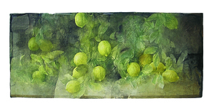 Pedro CANO - Drawing-Watercolor - Limones
